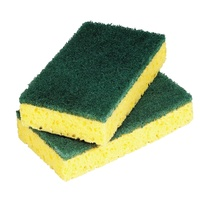 Large Foam Backed Scourer Pads (Pack x10)
