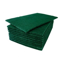 Large Green Scourer Pads (Pack x10)