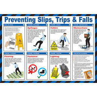 TRIPS AND FALLS POSTER