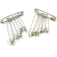 Safety Pins (6)